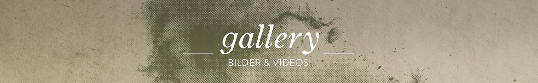 gallerie-fotos-videos-green-shirts