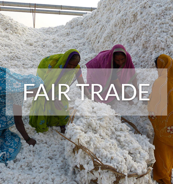 Fair Trade Produktion bei Green Shirts